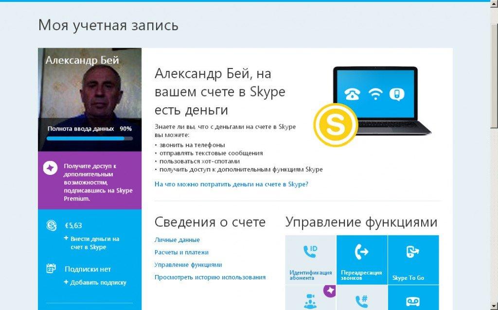 Платные услуги скайпа. Личная страница.